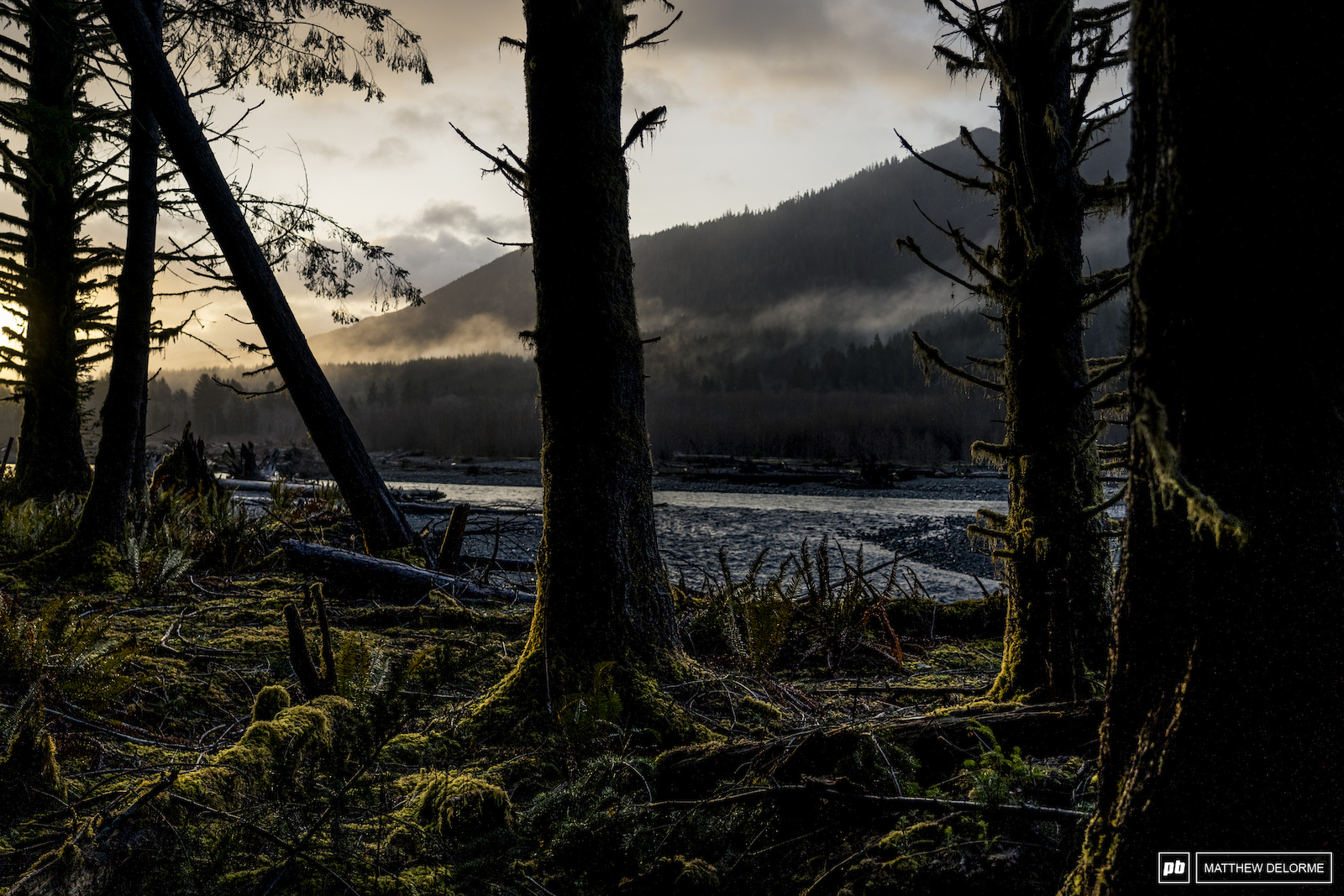 Hoh River Olympic National Park Washington.