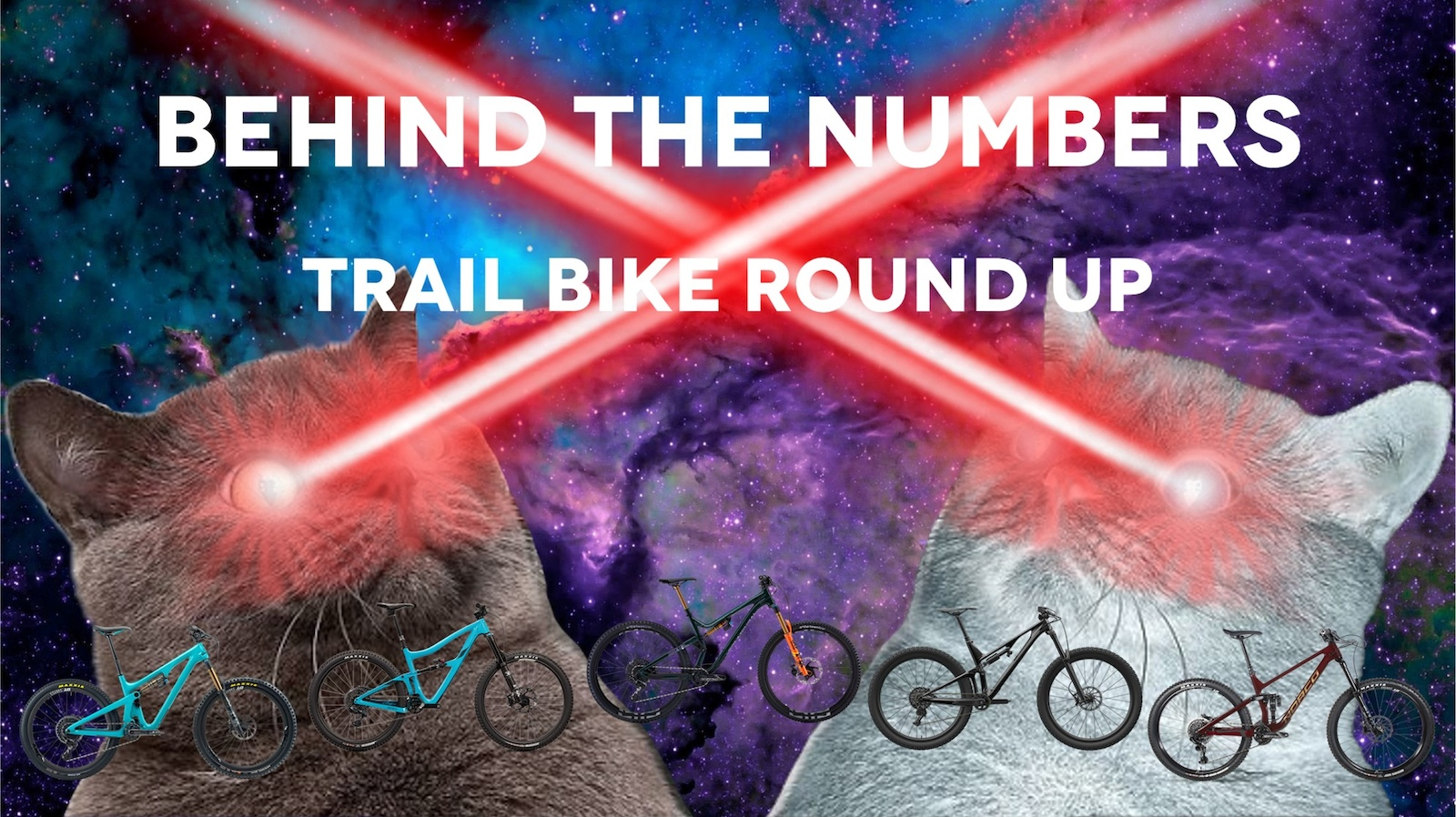 Behind the Numbers Trail Bike Round Up