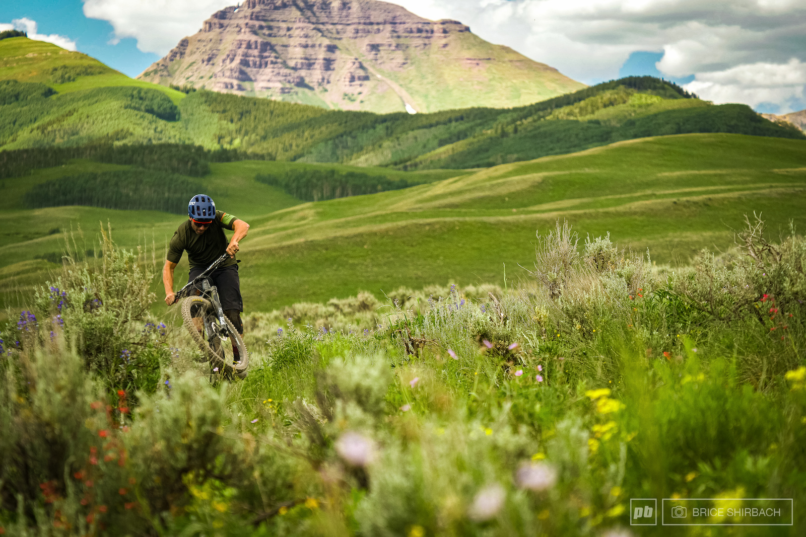 Local Flavours Crested Butte CO