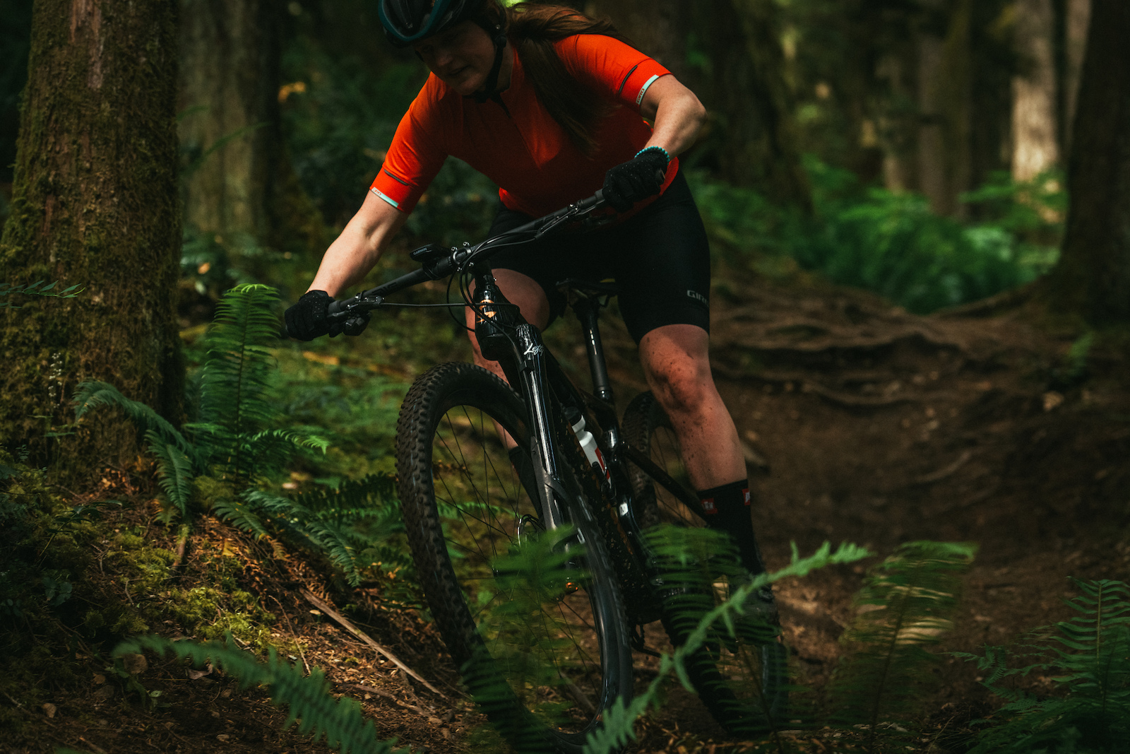 Cannondale Scalpel Photo Margus Riga