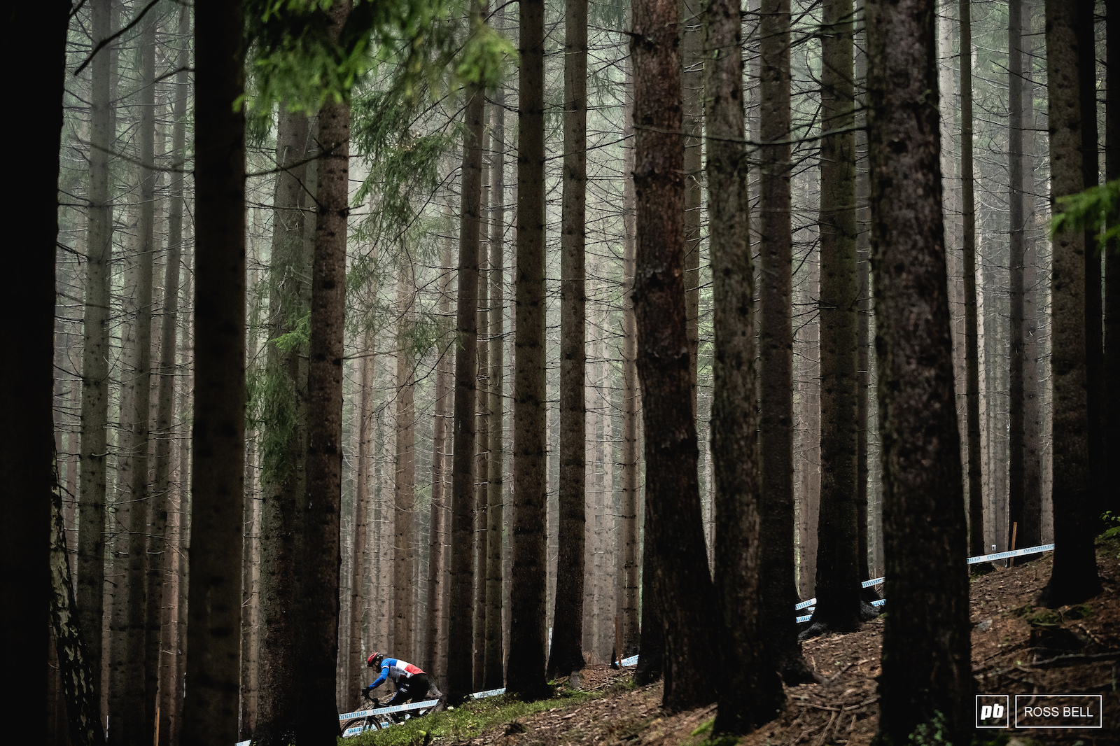 The woods of Nove Mesto are a rather quaint setting for a bike race.
