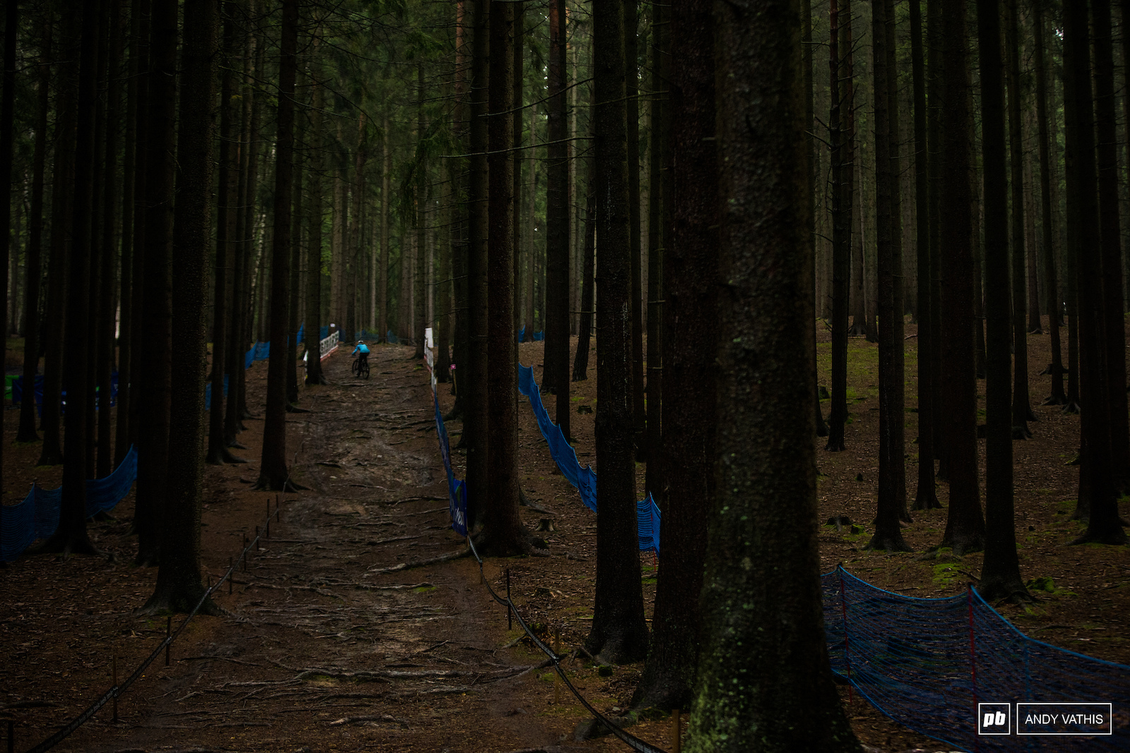 The long rooty climb to the upper part of the course will be a lot quieter this year without spectators.