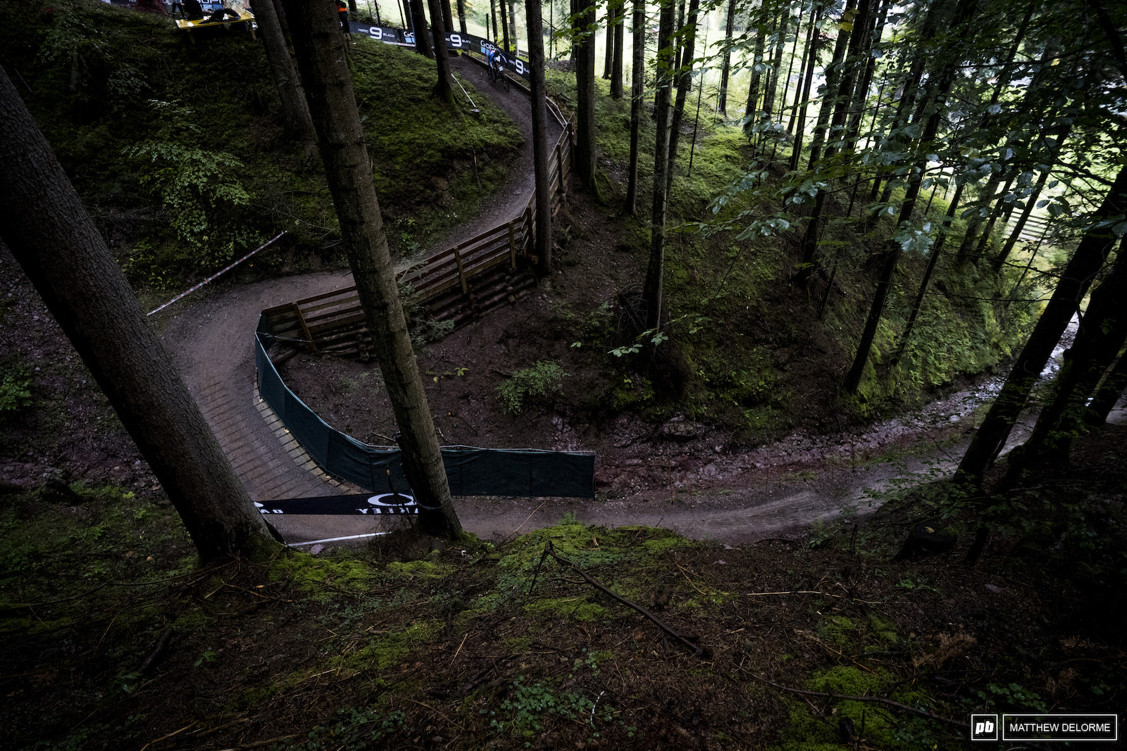 A bit of smooth woodland bike park to mix it up.