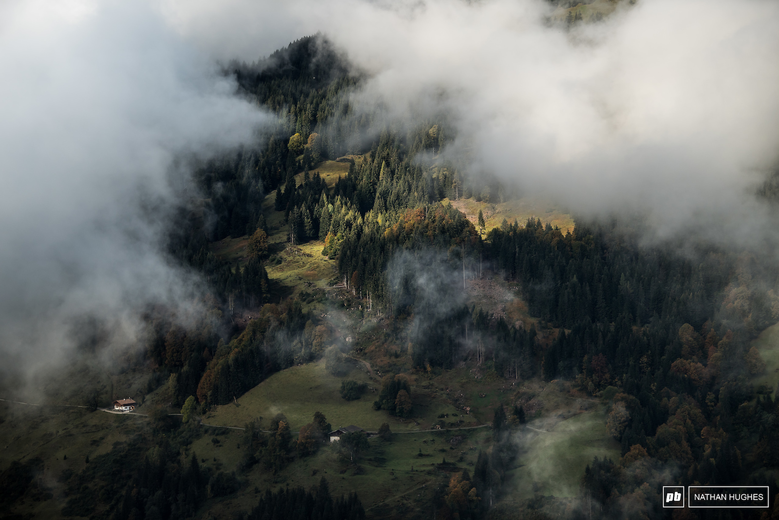 Forest cities... The people of Austria live in them very safely.