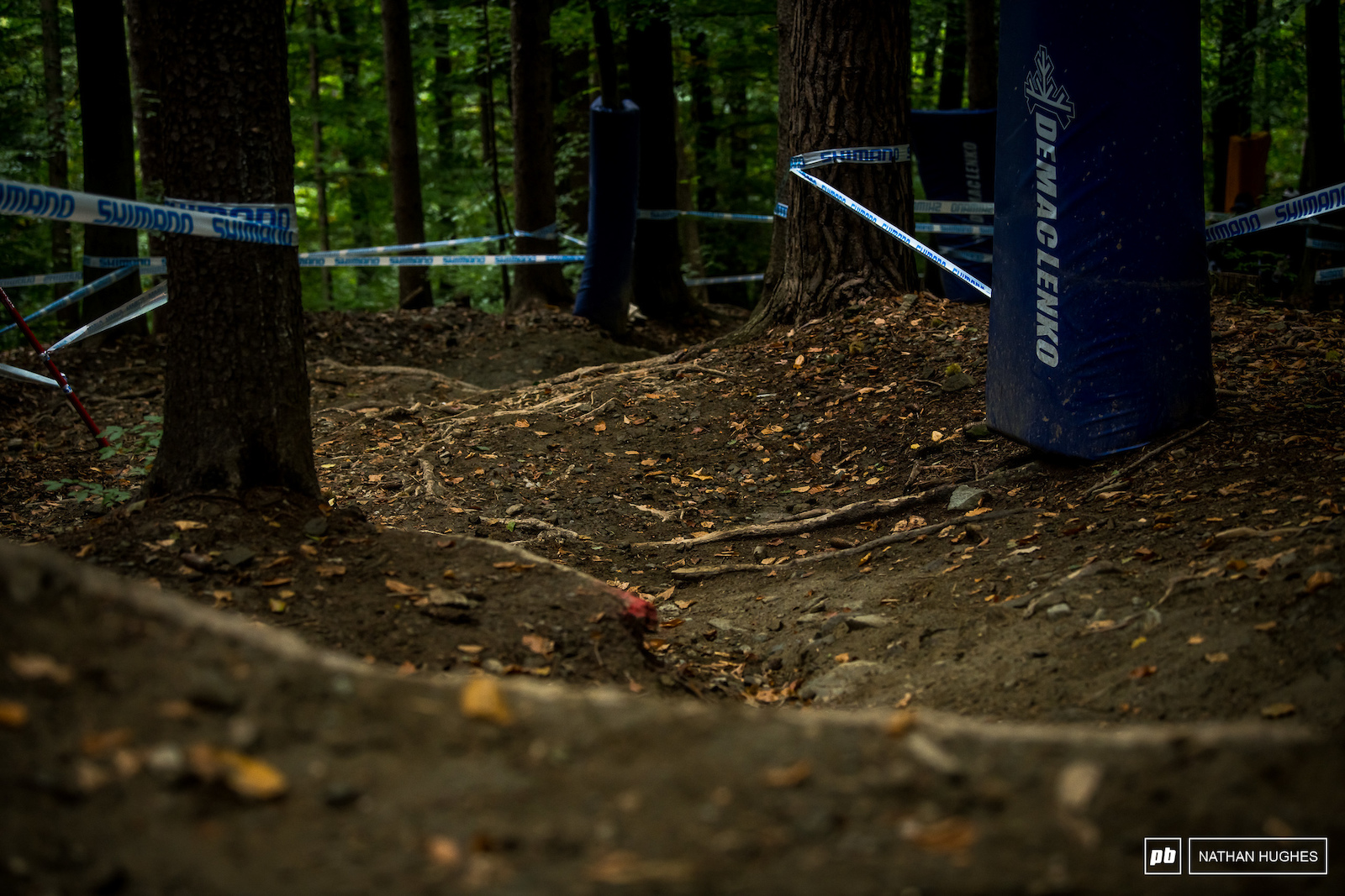Maribor s main theme undulating smooth dirt with rooty interuptions.