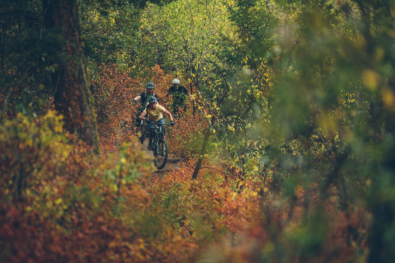 April Zastrow weaving through the fall foliac on Stackrock Trail