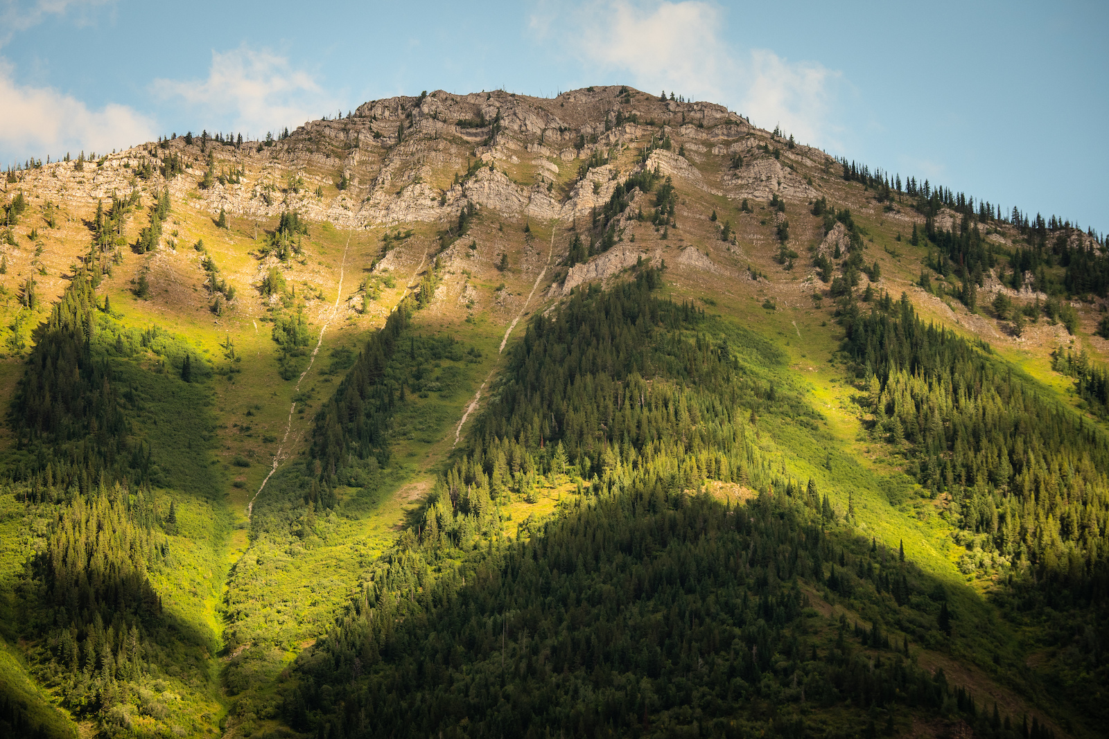 Mount Fernie in all its glory