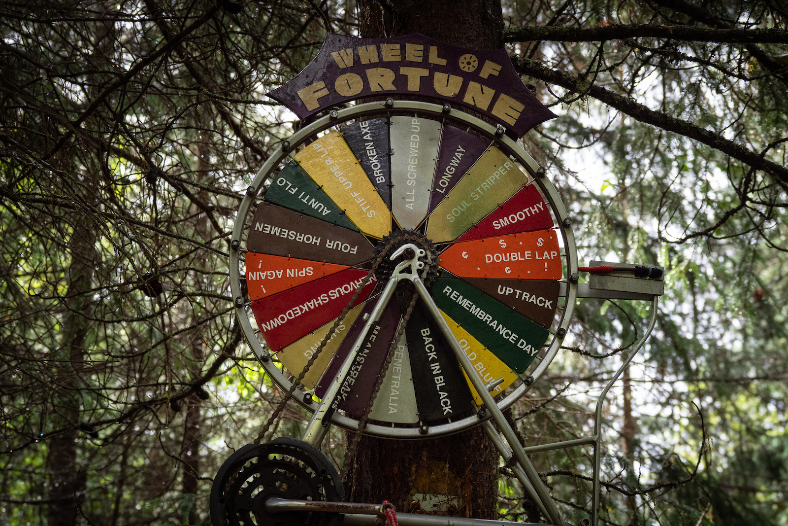 Not sure what to ride in Smithers Pull the wheel of fortune and there s your decision made