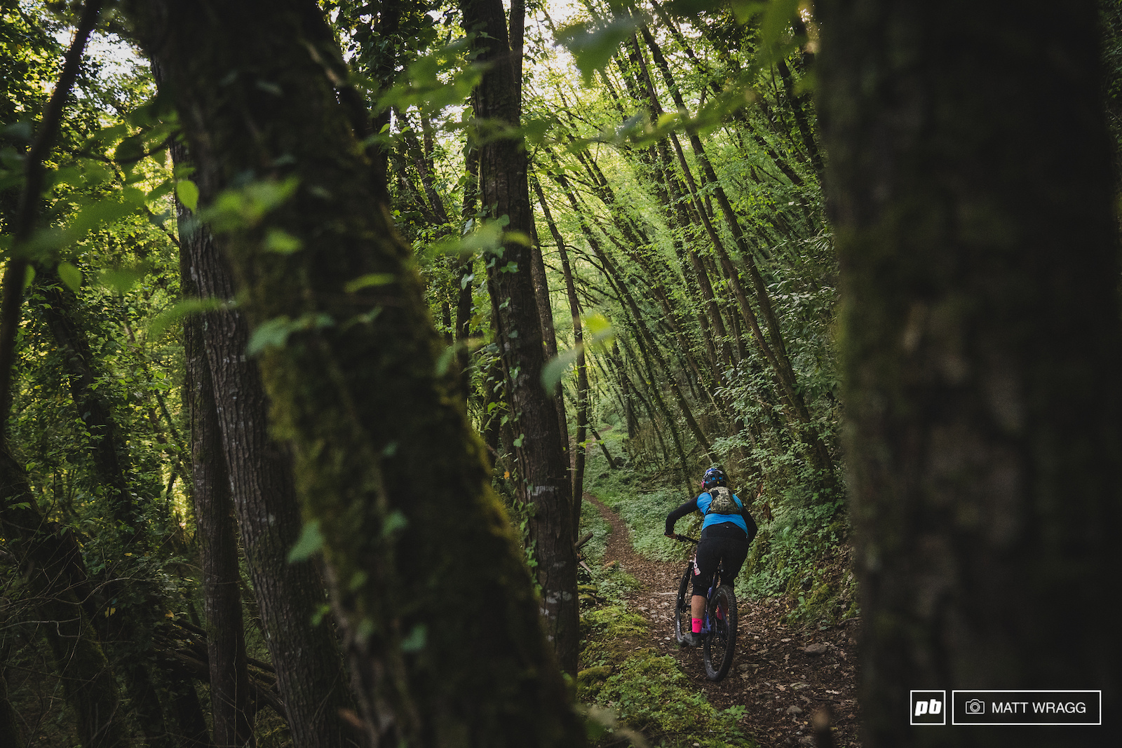 The final part of Candaniel mellows out for a blast through the mossy forest.