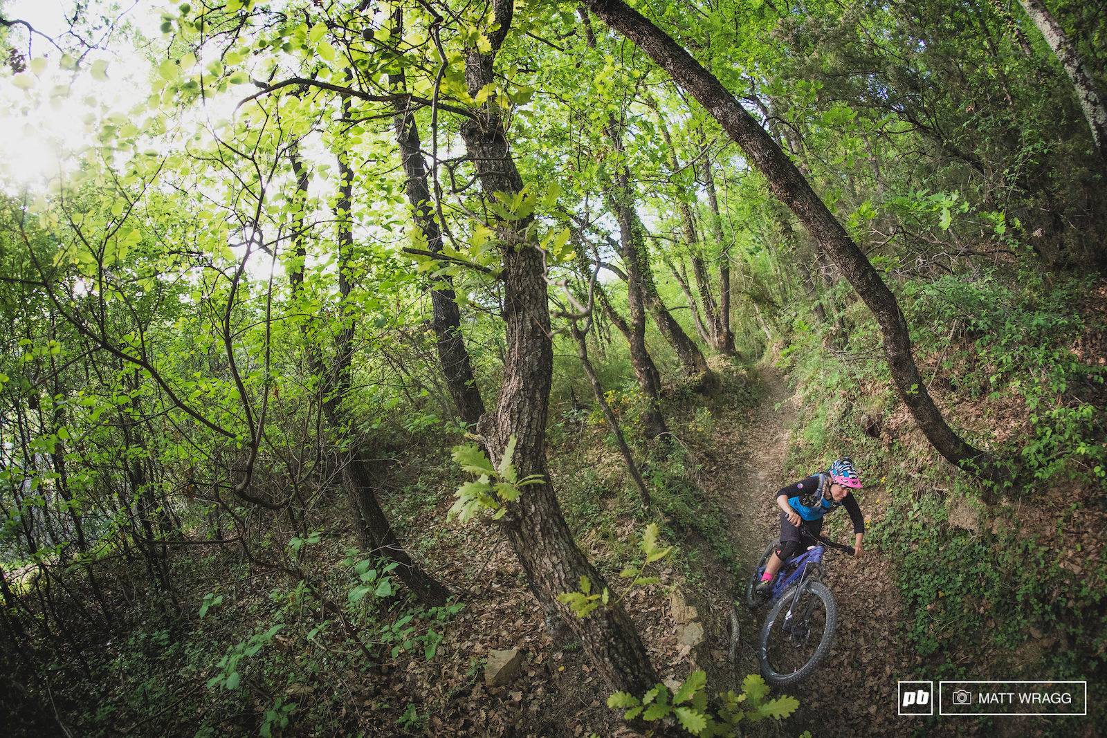 Bramafam is one of my favourite trails on that side of the valley - the lower part is smooth fast and flowing - perfect for when your eyes are going a but funny after thirteen hours on the go.