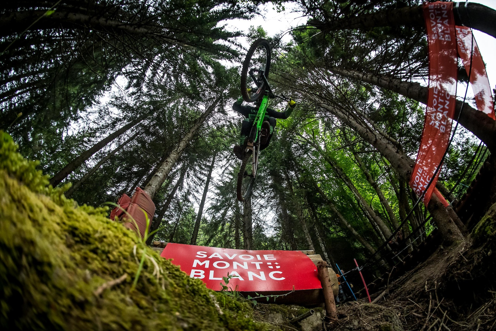 The final leap of faith that would soon take down Reece Wilson.