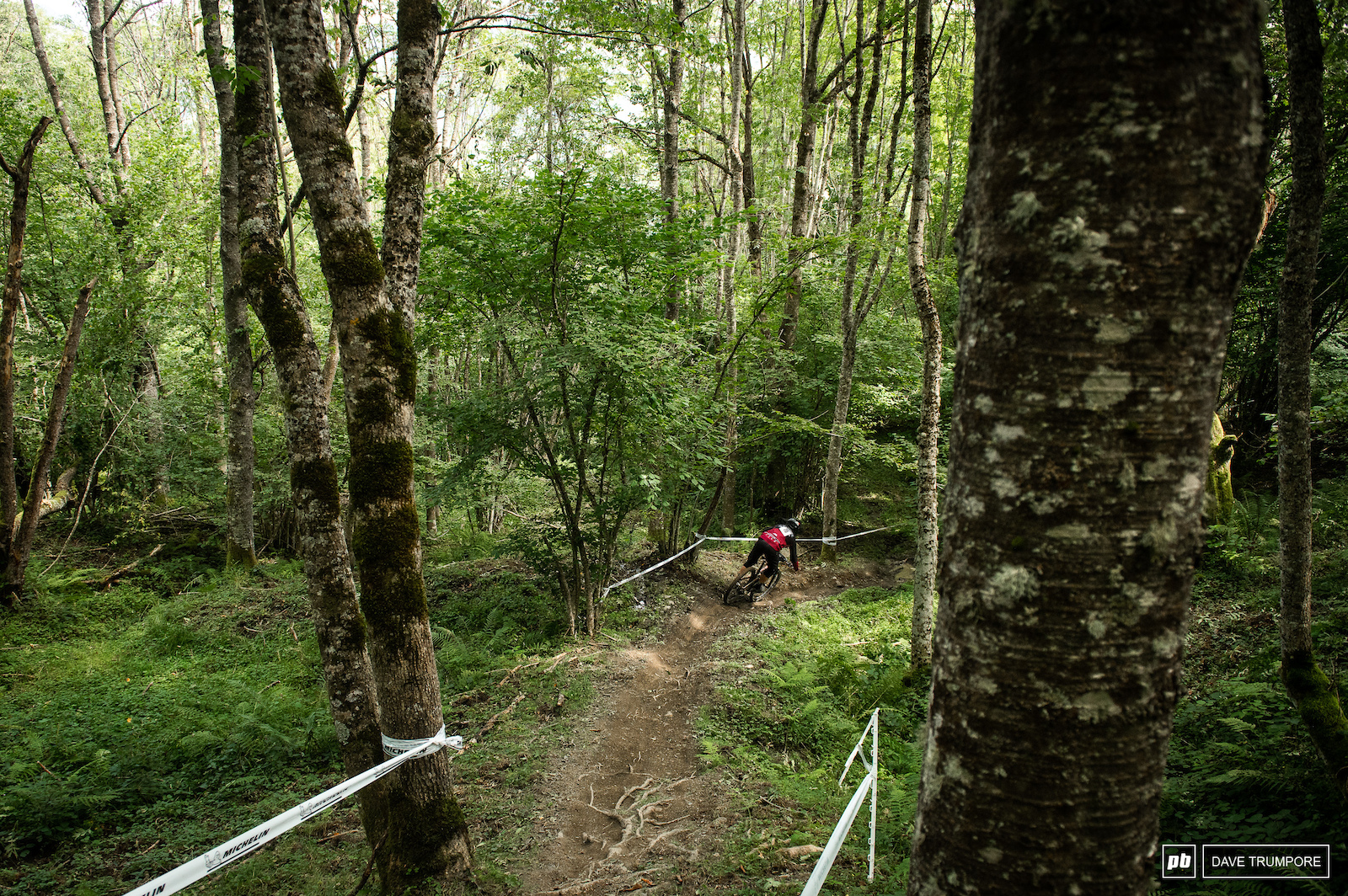 Stage 6 took a break from the high alpine environment and made it s way through a technical forest