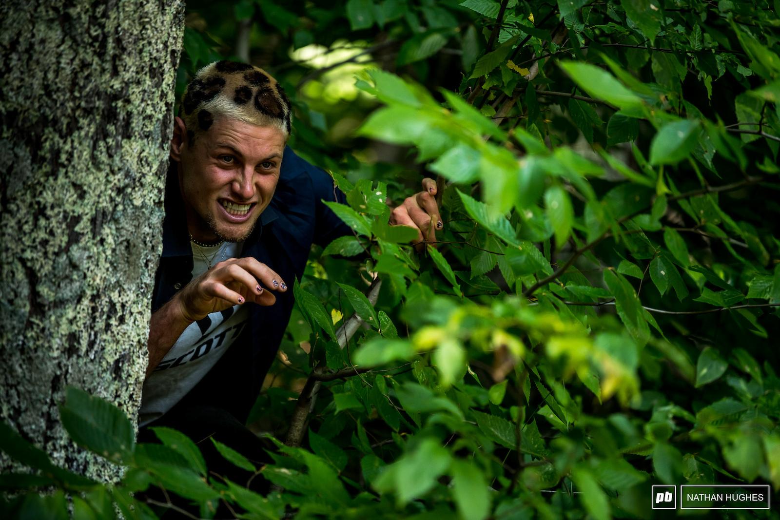 Dangerous creatures lurking in the undergrowth.
