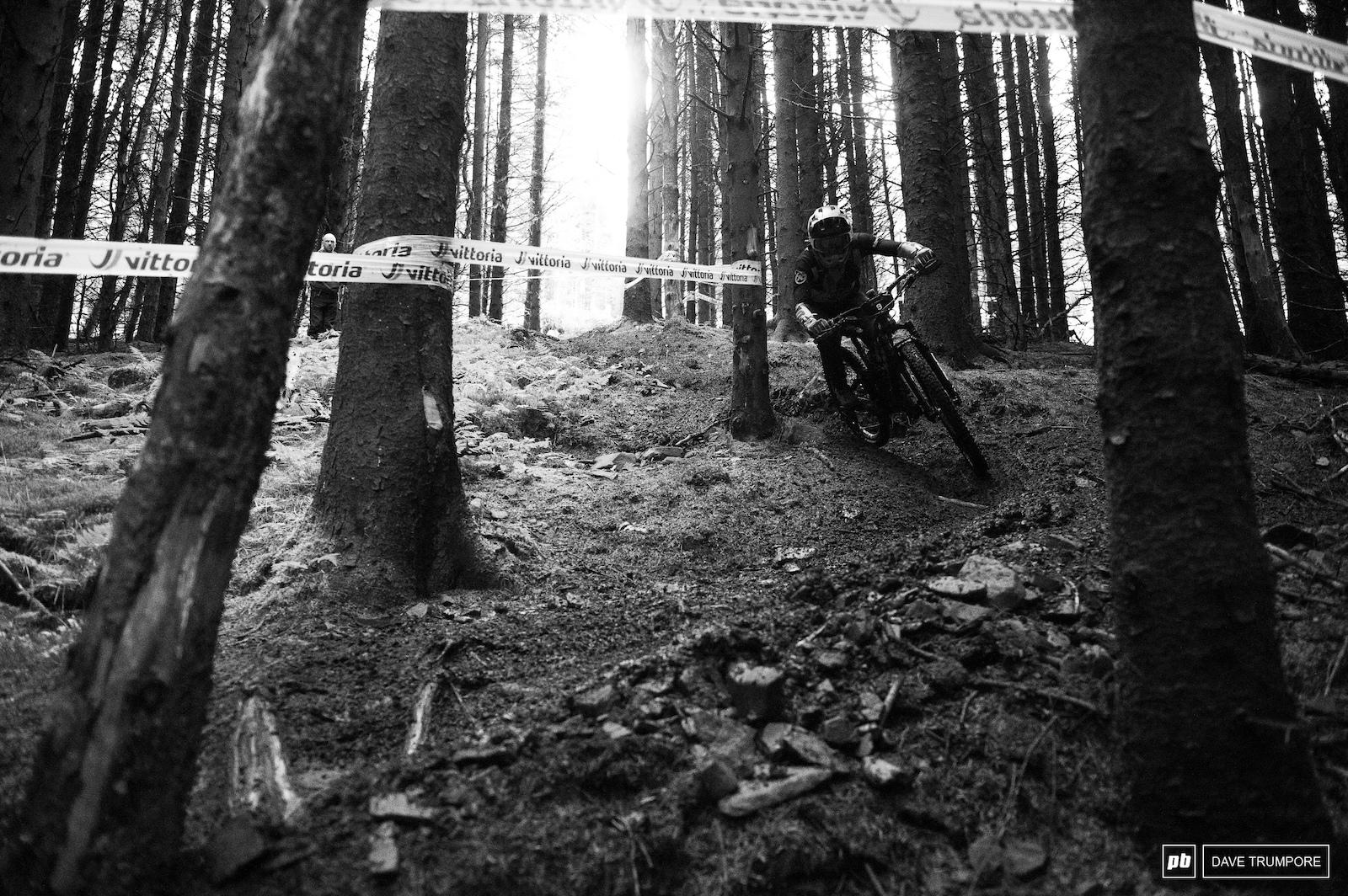 Miranda Miller into the dark and slick woods