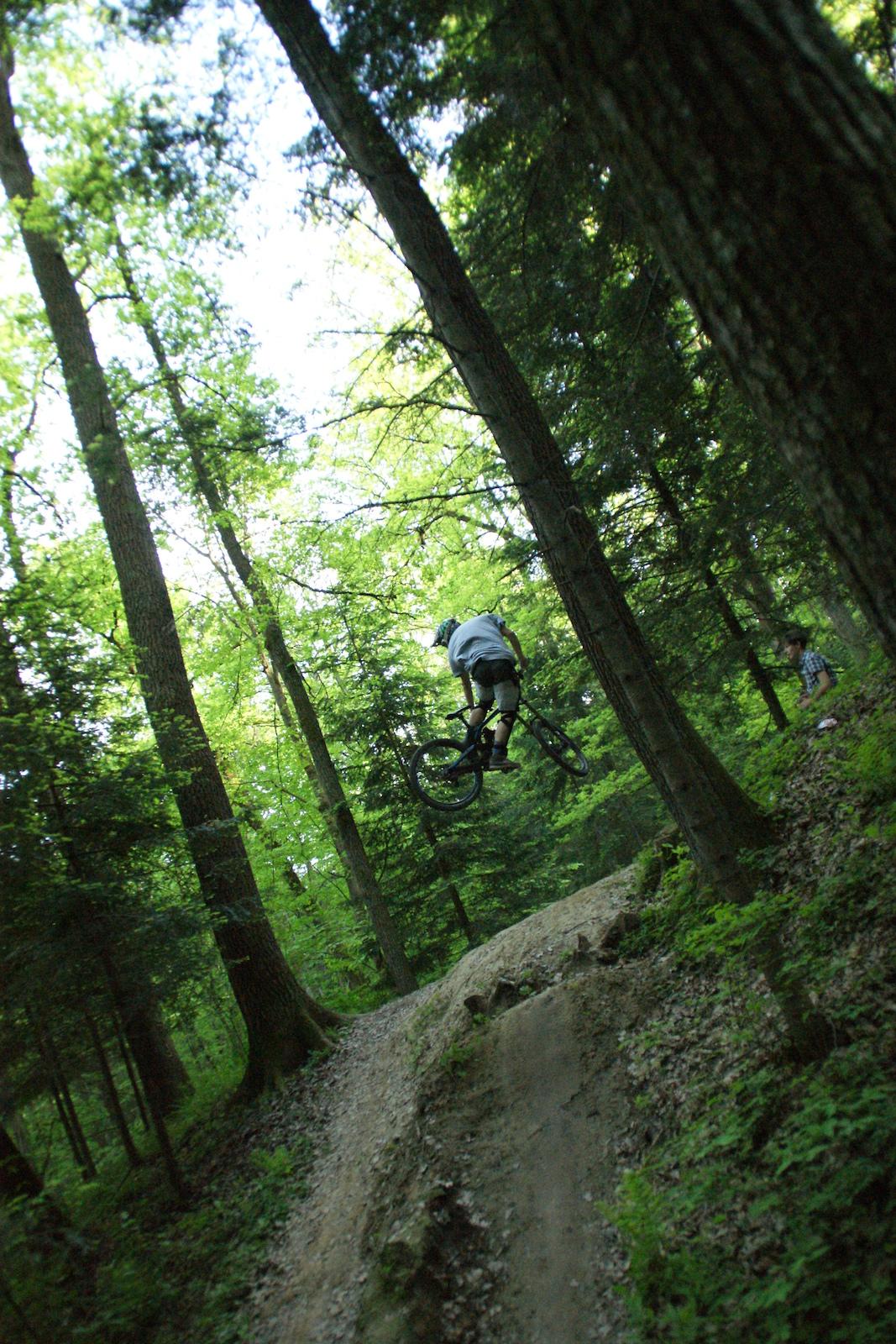 Whip, foto by Hugo.            www.bartbass.com www.goodbike.com.pl www.naxa.pl www.koninki.pl www.gerex2.pl www.oponafelga.pl www.bikeline.pl www.titan.com.pl