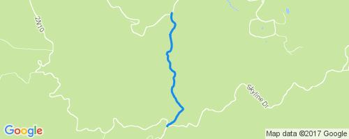 Big Bear California Map Google.Plantation Mountain Biking Trail Big Bear California